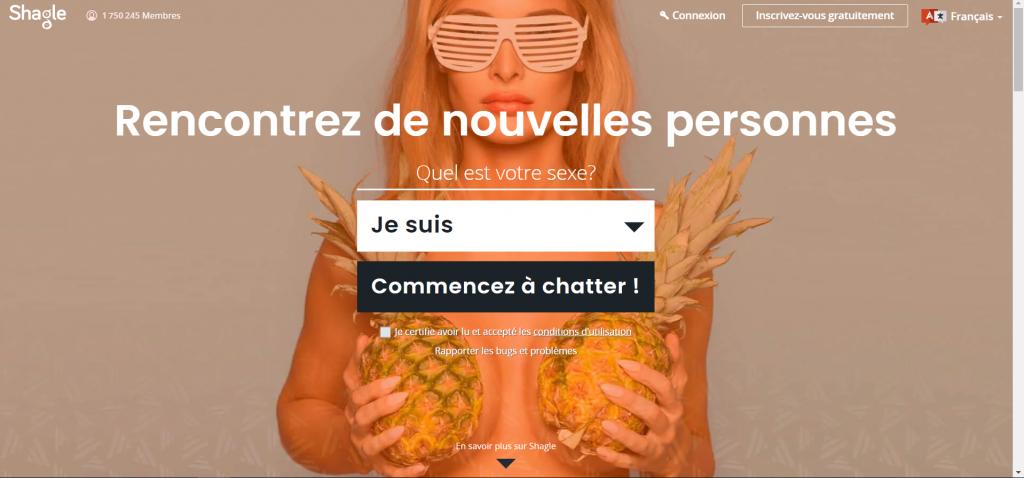 Interface Shagle.com : Tchat vidéo aléatoire gratuit