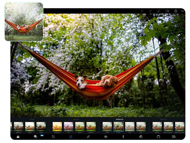 Photoshop Express facilite l'édition, la création et le partage de photos pour qu'elles se démarquent sur le plan social et partout ailleurs.