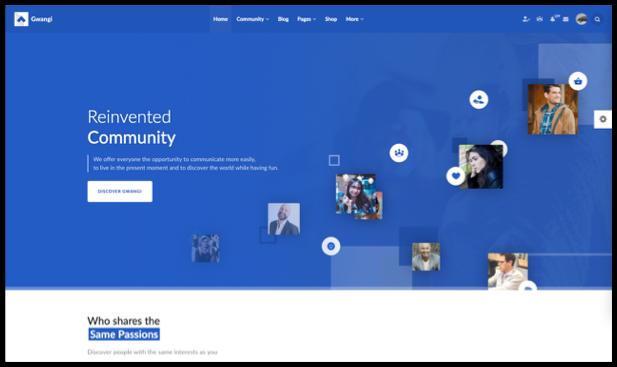 Gwangi - Adhésion polyvalente PRO, réseau social et thème de la communauté BuddyPress - 11